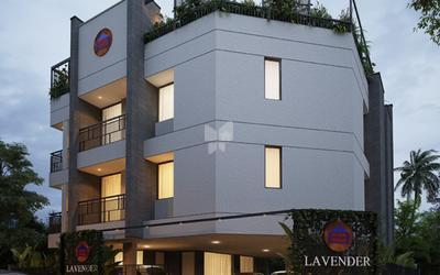 sreerosh-lavender-in-35-1560504316222