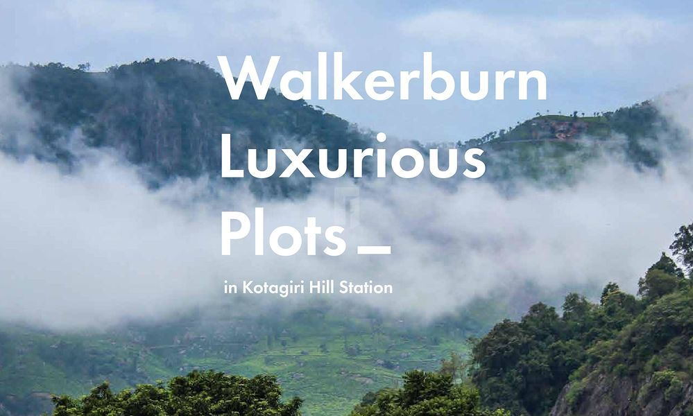 Walkerburn - Project Images