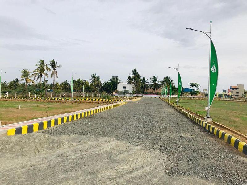 Krishna Raja Avenue - Others
