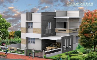 fortland-euphoria-in-795-1580735420771