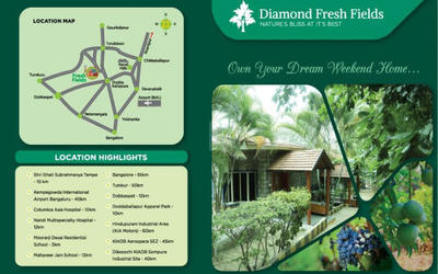 diamond-fresh-fields-in-255-1590994207950