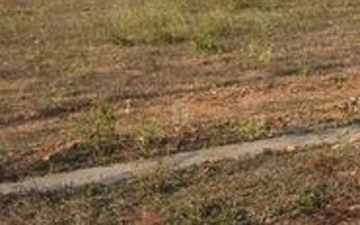 prakruti-narayanadri-in-3587-1625655114203