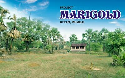 jbpl-marigold-in-uttan-elevation-photo-1tvc