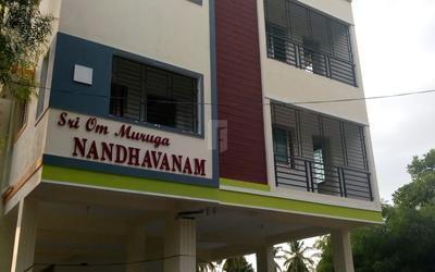 Properties of Sri Om Muruga Constructions