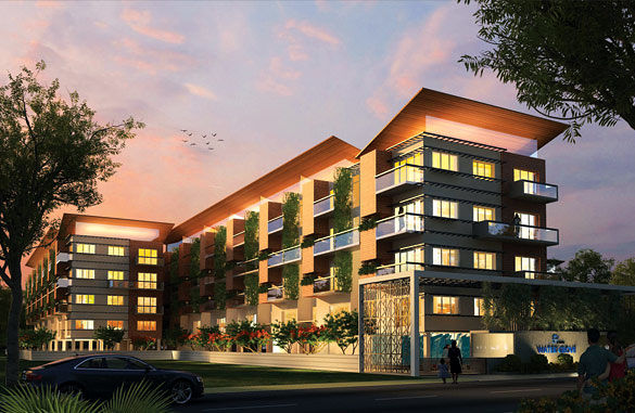 The Watergrove - Project Images