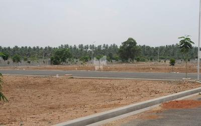 globus-garden-phase-ii-in-avinashi-road-elevation-photo-1ine