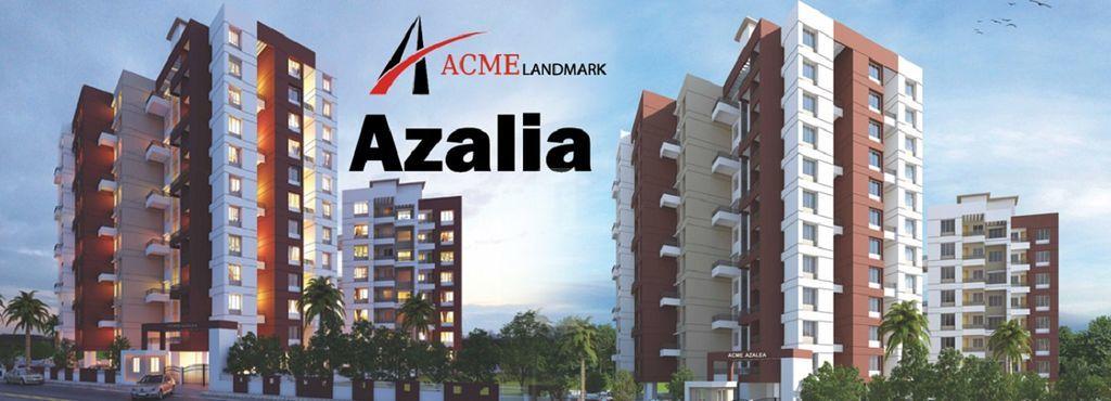 ACME Landmark Azalea - Project Images