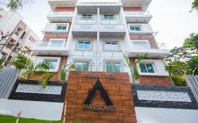 urban-awesome-in-thiruvanmiyur-elevation-photo-1iil