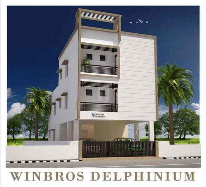 Winbross Delphinium - Project Images