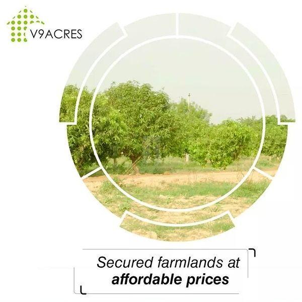 V9 Acres - Project Images
