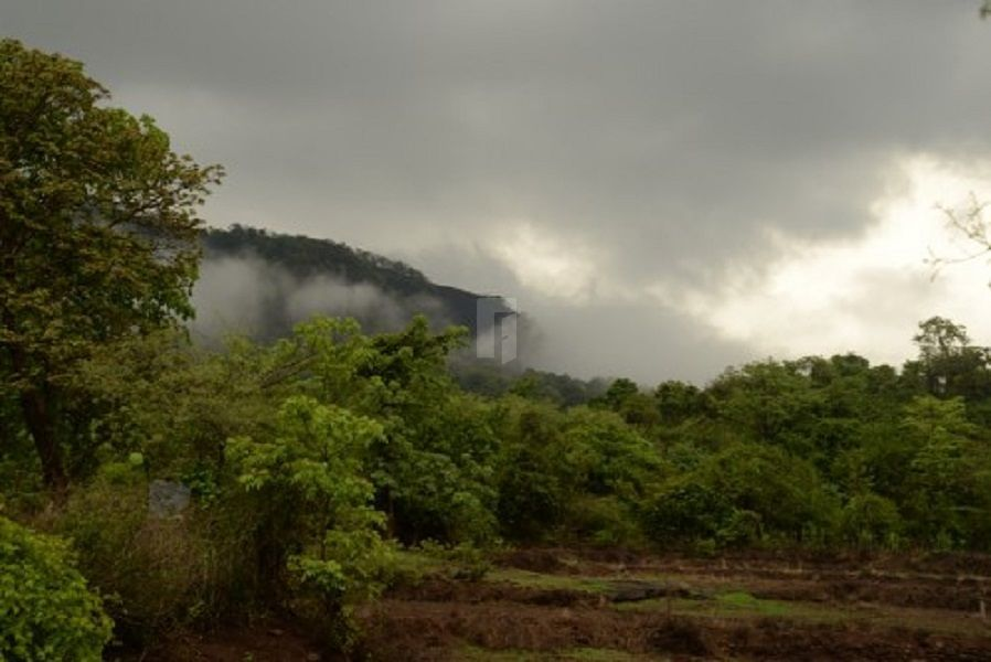 Vatavruksha Iris - Elevation Photo