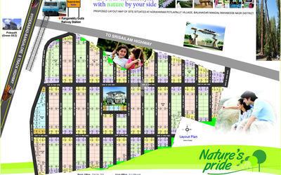 natures-pride-in-shadnagar-master-plan-1hl7