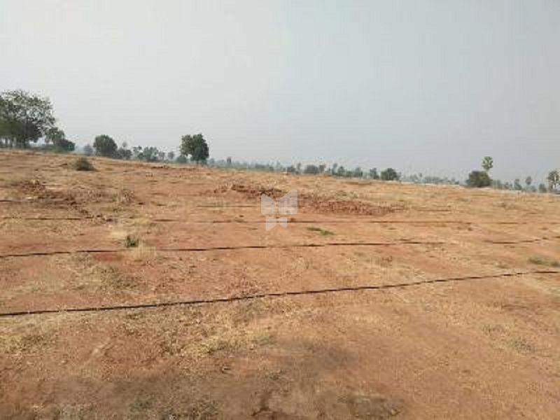 Sri Tirumala Adi Padmavathi Nagar - Elevation Photo