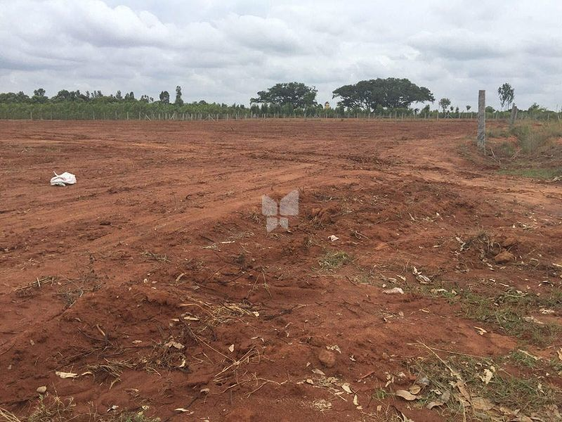 M and M Krishna Greens Eastwind - Project Images