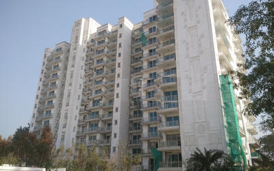 dlf-kings-court-in-greater-kailash-elevation-photo-1i67