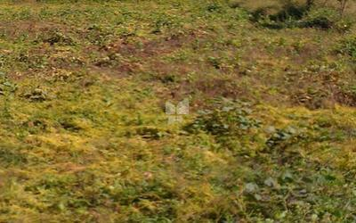 the-mgli-le-chalet-golf-phase-ii-in-raigad-elevation-photo-1v0e