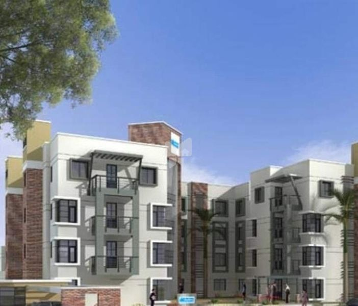 Skyline Magnolia - Project Images