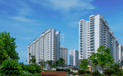 purva-palm-beach-in-786-1568006417160