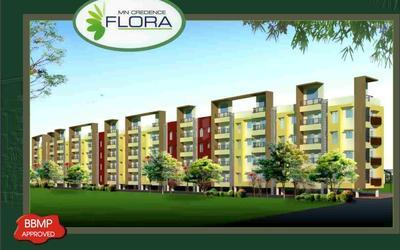 mn-credence-flora-in-495-1625732394354