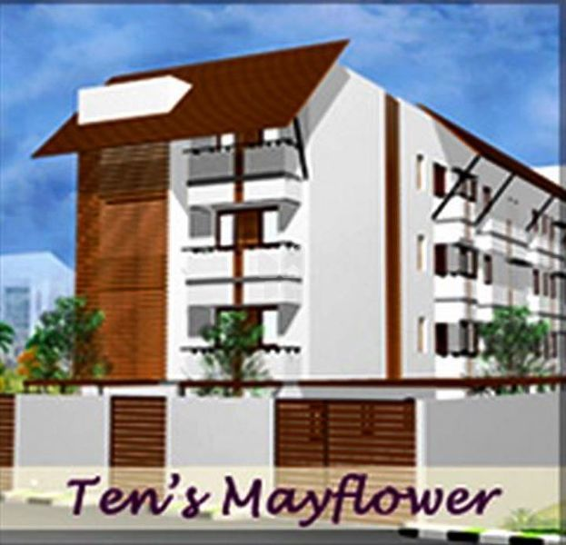 Tens Mayflower - Elevation Photo