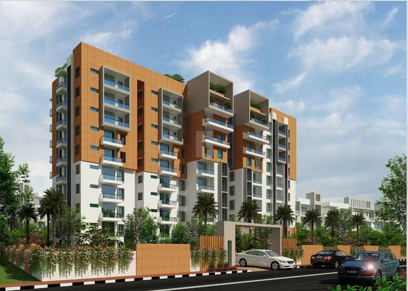 Sunniva Willow - Project Images
