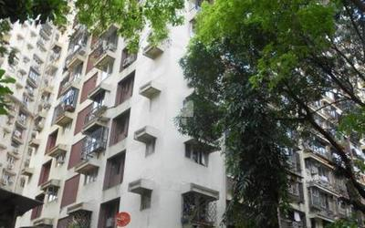 sunita-apartment-in-tardeo-elevation-photo-lsu.