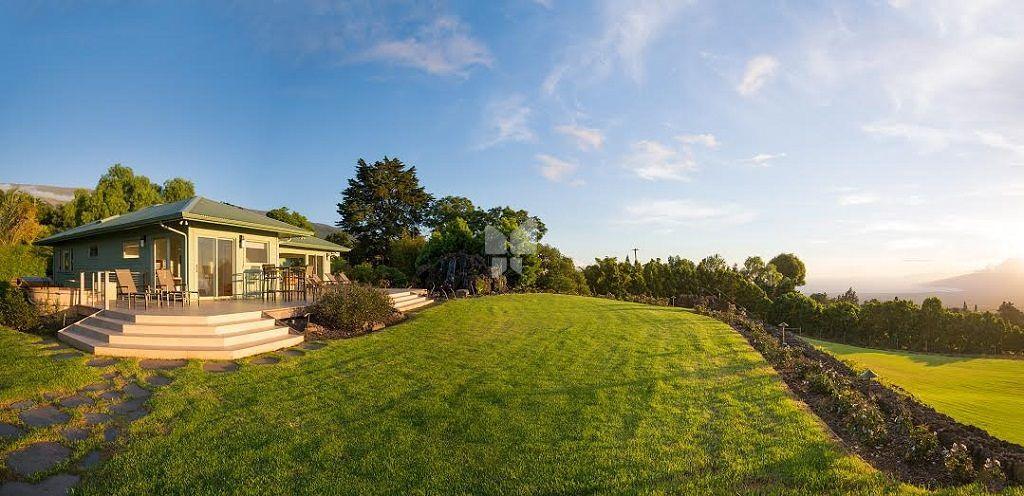 Eden Olive Hills - Project Images