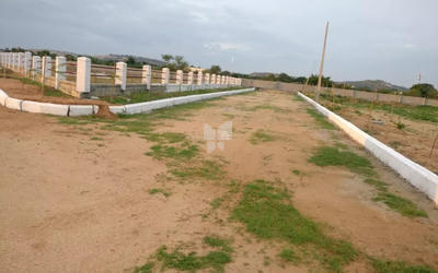 mudra-resorts-and-farm-land-in-nalgonda-elevation-photo-1xeb