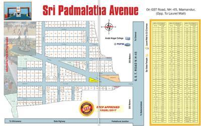 ranga-sri-padmalatha-avenue-in-chengalpattu-town-master-plan-1txk
