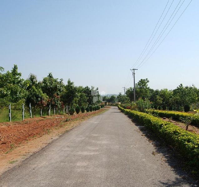 Sri Vijaya Ahladha Gardens - Others