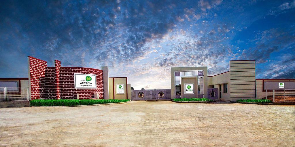 Asset Arcadia - Elevation Photo