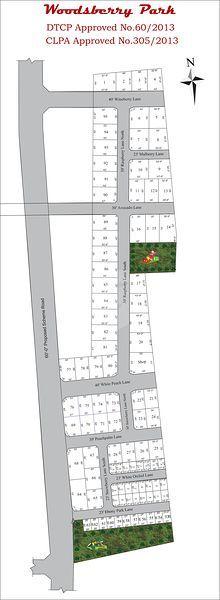 Globus Woodsberry Park - Master Plans