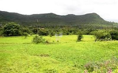 sairung-home-in-woods-in-hinjawadi-phase-i-elevation-photo-ata