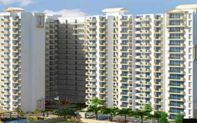 mr-platinum-321-in-raj-nagar-extension-1ptt