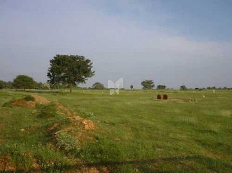 Fairyland Irene County - Elevation Photo