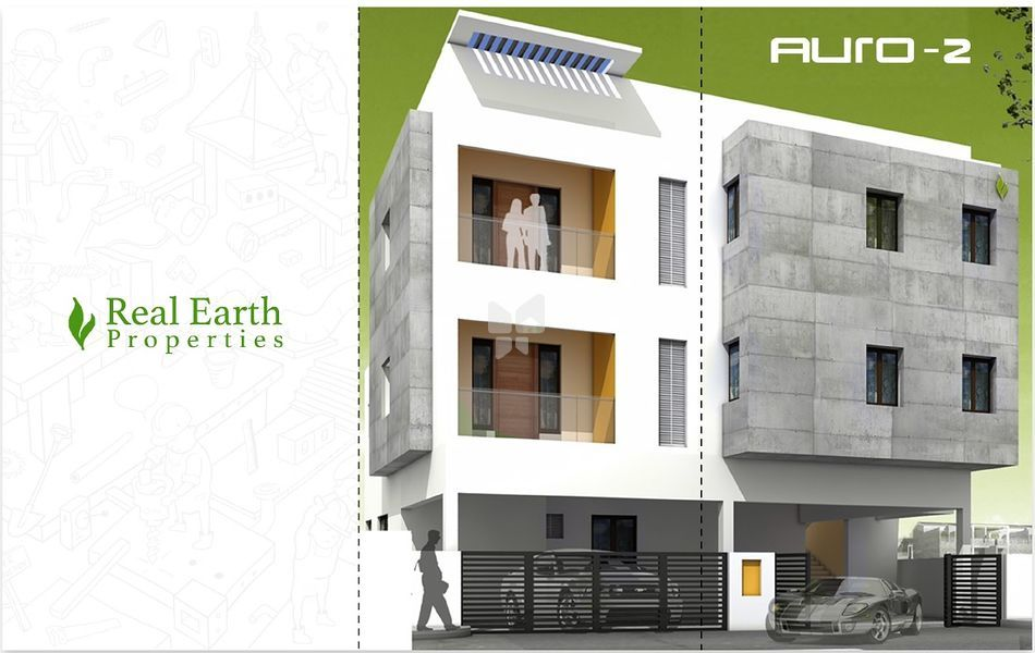 Real Earth Auro - Elevation Photo