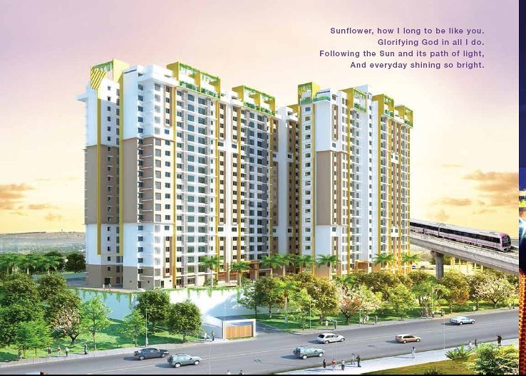 Purva Sunflower - Project Images