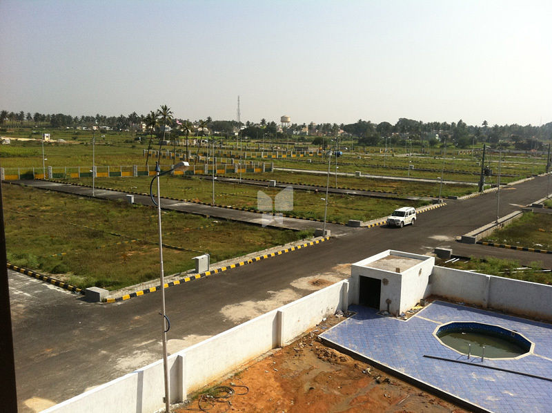 Ombalaji Golden Meadow - Project Images