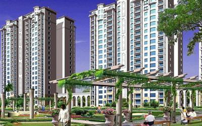 amrapali-smart-city-in-sector-63-elevation-photo-1l3q