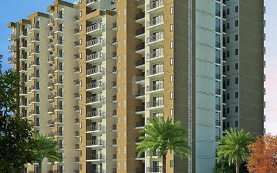 solitairian-paradise-in-raj-nagar-extension-elevation-photo-1qri