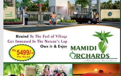 sl-mamidi-orchards-in-744-1610366230134