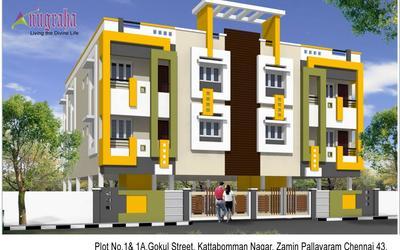 anugraha-in-pallavaram-65y