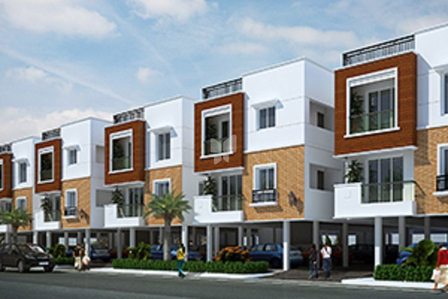 Color Avenue Phase 2 - Project Images