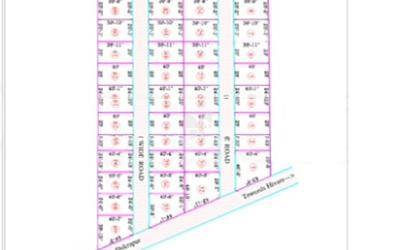 tirupati-residential-land-in-shikrapur-road-master-plan-1ddy