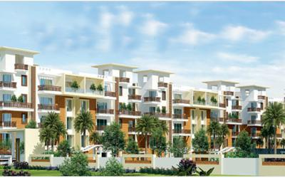 palms-in-marathahalli-7zn