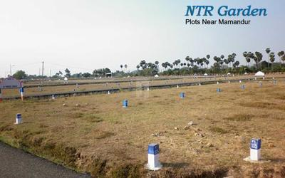 ntr-garden-in-chengalpattu-town-interior-photos-1aop