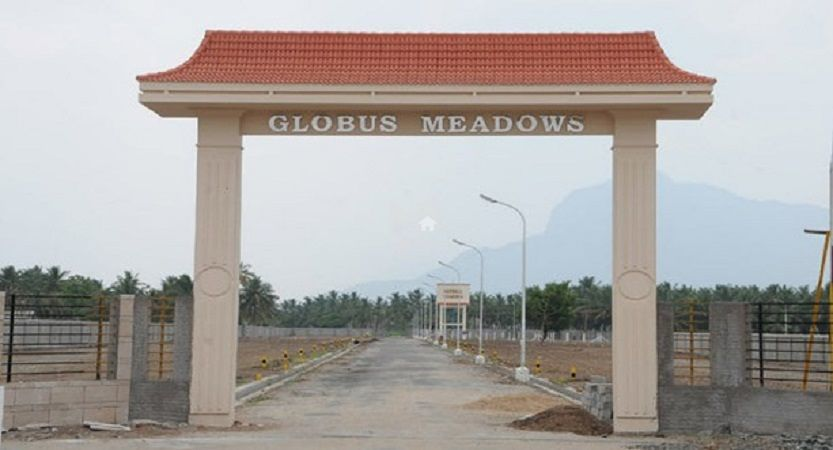 Globus Meadows - Project Images